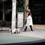 Dog walker in Iran - now banned in Tehran