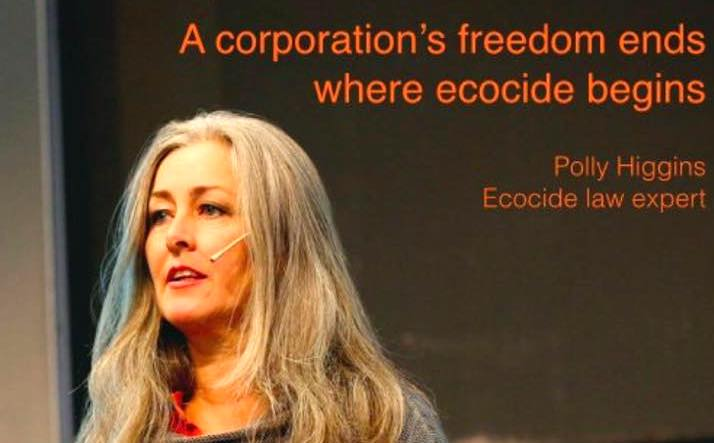 Polly Higgins ecocide law expert