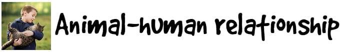 Animal Human Relationship