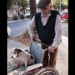 Human and dog are on equal terms