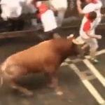 Pamplona festival bull chases man