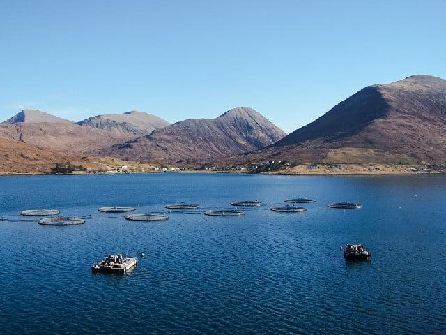 Fish farm in Loch Ainort © Richard Dorrel