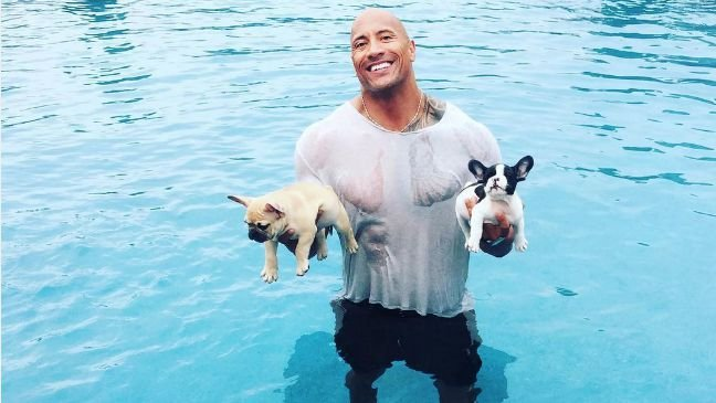 Dwayne Johnson and dogs Brutus and Hobbs
