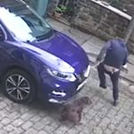 Scared delivery man runs from barking dog