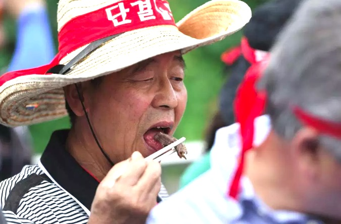 Dog farmer eating dog meat in S Korea
