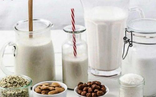 Plant based milks
