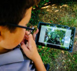 WWF seek app in use