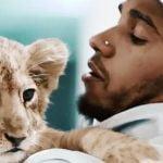 Lewis Hamilton with lion cub
