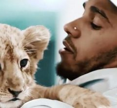 Lewis Hamilton with lion cub