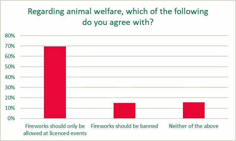 Survey indicates people want staged fireworks displays