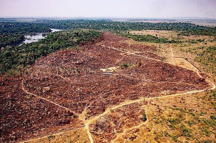 Amazon destruction getting worse in Brazil.