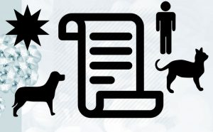 Contract between humans and cats and dogs