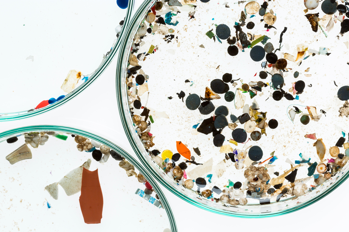 Microparticles of plastic