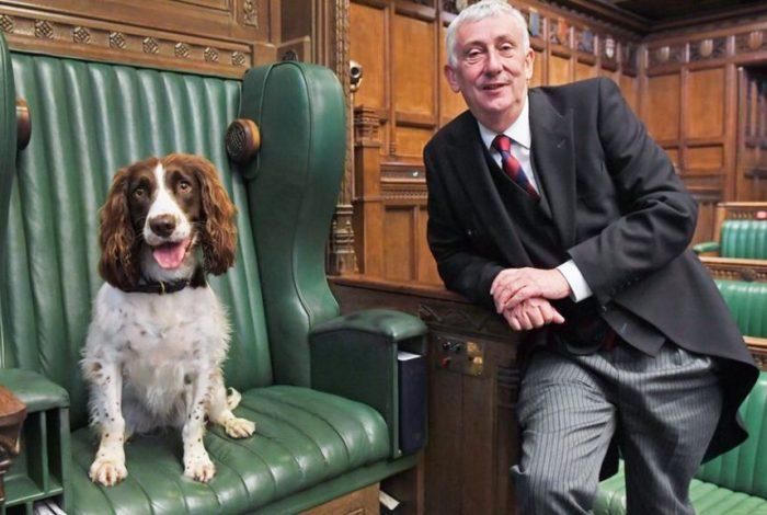 Poppy sits in Speakers chair