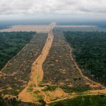 Amazon deforestation in Brazil for soya production