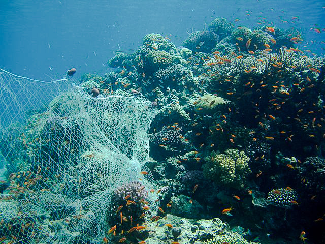 Ghost fishing nets