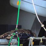 Intensity-modulated radiation therapy for dogs