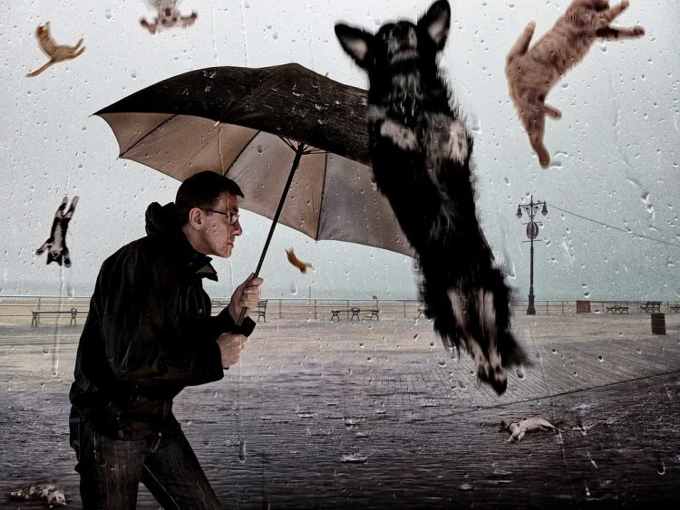 Rainging cats and dogs origin