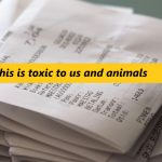 Bisphenol receipts