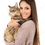 Holding a cat correctly