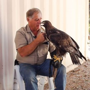 Martin and pet eagle