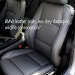 Are BMW leather seats damaging wildlife conservation?