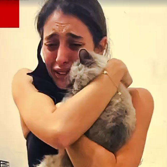 Woman reunited with her cat who was lost after the Beirut explosion
