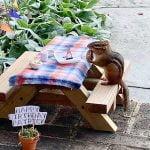 chipmunk eating