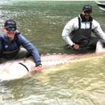 British Colombia sturgeon weighing 600 pounds