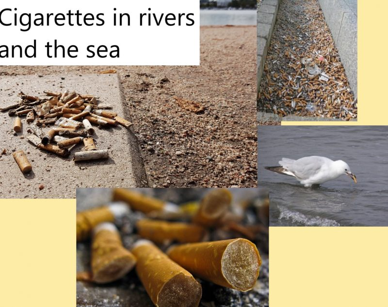 Cigarettes poisoning rivers and sea