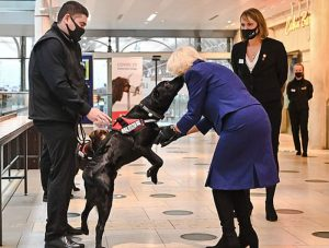 Coronavirus sniffer dog meets the duchess