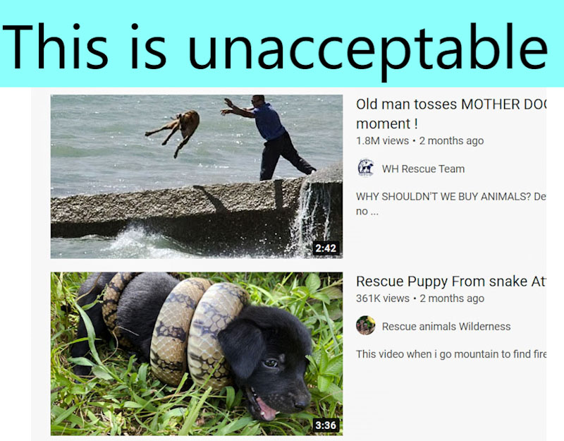 Dog rescue videos are an abuse of the animal because of the maker's desire to get views and therefore advertising revenue