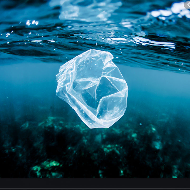 Oceans polluted with plastic