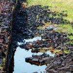 Peat bog and harvesting