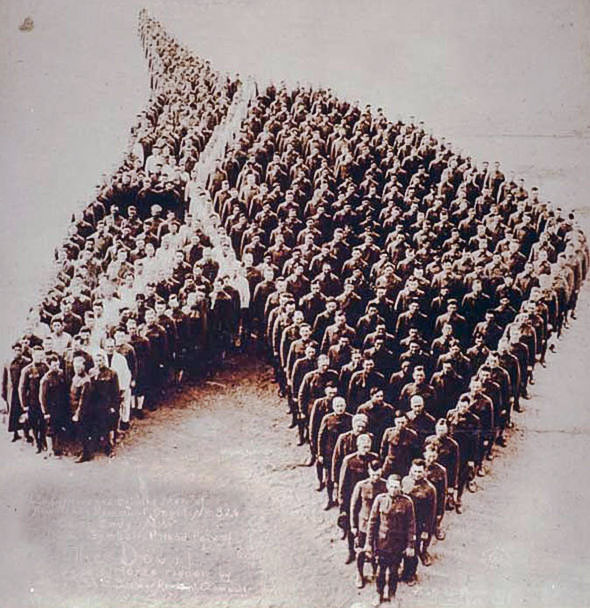 Soldiers pay tribute to the horses killed during WW1