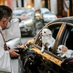 Priest blesses a dog in a passing car in Quezon City