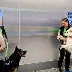 Helsinki Airport coronavirus sniffer dogs