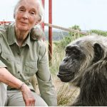 Jane Goodhall and friend