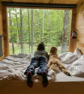 Dog and woman looking out of window