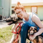 Animal shelters should have a workers' compensation system in place
