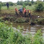 Firefighters rescue a horse from a river