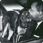 Martin Luther King and police dog